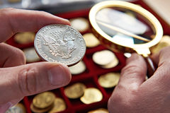 Amerikanischer Dollar in den Händen des Numismatikers Stockfotografie