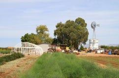 Amerikanischer Gemüsebauernhof in einer Wüstenumgebung Lizenzfreies Stockfoto