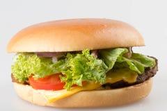 Amerikanischer Hamburger stockfotografie