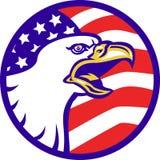Amerikanischer kahler Adler, der mit USA-Markierungsfahne schreit Lizenzfreie Stockfotos