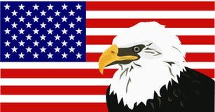 Amerikanischer kahler Adler mit Markierungsfahne Lizenzfreies Stockbild