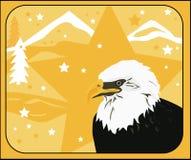 Amerikanischer kahler Adler-Stern Stockfoto