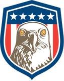 Amerikanischer kahler Eagle Head Stars Shield Retro Stockbilder