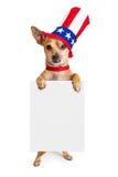 Amerikanischer patriotischer Chihuahua-Hund, der Zeichen hält Lizenzfreies Stockfoto