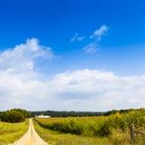 Amerikanisches Ackerland Stockfotos