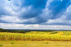Amerikanisches Ackerland Stockfotografie