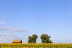 Amerikanisches Ackerland Lizenzfreie Stockfotografie