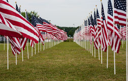 Amerikanisches Feld von Flaggen auf Memorial Day Stockfotos