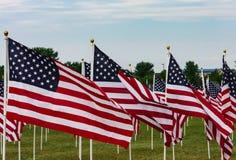 Amerikanisches Feld von Flaggen auf Memorial Day Stockbilder