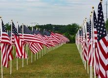 Amerikanisches Feld von Flaggen auf Memorial Day Lizenzfreies Stockbild