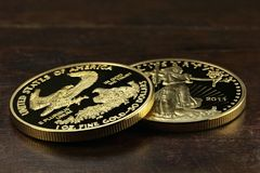 Amerikanisches Gold Eagle Lizenzfreie Stockfotografie