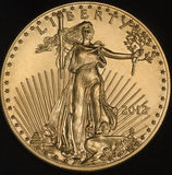 Amerikanisches Gold Eagle Coin (Gegenstücck) Lizenzfreies Stockbild