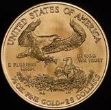 Amerikanisches Gold Eagle Walking Liberity Vereinigter Staaten Stockfotos
