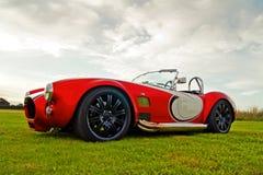Amerikanisches klassisches Auto - Schlange im Gras lizenzfreie stockbilder
