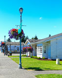amerikansk arkitektur Historisk gata i den Steilacoom staden Royaltyfria Foton