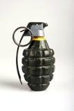 amerikansk granat Arkivbild