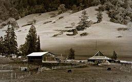 amerikansk jordbruksmark Fotografering för Bildbyråer