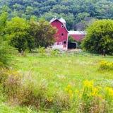 Amerikansk jordbruksmark Royaltyfri Foto