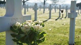 Amerikansk kyrkogård Margraten Royaltyfria Foton