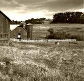 amerikansk lantgård Arkivbilder