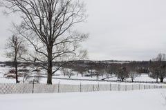 Amerikansk lantgård i vinter Royaltyfri Foto