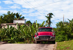 Amerikansk Oldtimerparkering under en blå himmel i Kuba Arkivbild