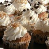 Amerikansk sötsakgluten frigör muffin Royaltyfri Bild