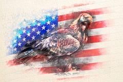 Amerikansk skallig örn som kombineras med USA flaggan royaltyfri illustrationer