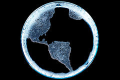 Amerikansk Spume Fotografering för Bildbyråer