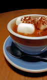 Amerikansk varm choklad med marshmallower arkivbild