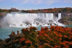 amerikanska falls Arkivfoton
