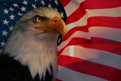 Amerikanska flaggan med den amerikanska örnen och solljus Royaltyfri Bild