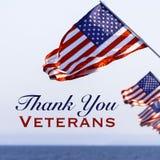 Amerikanska flaggan med en hälsning för veterandag arkivbild
