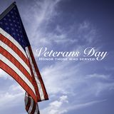 Amerikanska flaggan med en hälsning för veterandag royaltyfria bilder