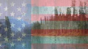 Amerikanska flaggan och skoglandskap stock video