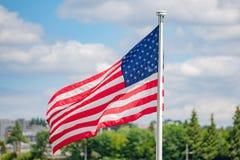 Amerikanska flaggan på landskapbakgrunden royaltyfri fotografi