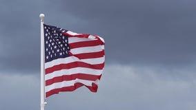 Amerikanska flaggan som vinkar i vinden, stock video