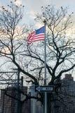 Amerikanska flaggan, stjärnor och band som blåser i vinden, på en pol med ett tecken för EN VÄG, fåglar som sitter i ett avlövat  fotografering för bildbyråer