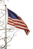 Amerikanska flagganutklipp royaltyfri fotografi