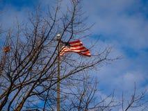 amerikanska flagganwind Arkivbilder