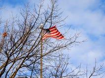 amerikanska flagganwind Fotografering för Bildbyråer