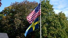 Amerikanska inbördeskrigflaggaflugor över svensk flagga lager videofilmer