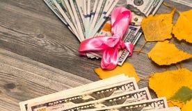 Amerikanska pengar som slås in i ett rosa band som en gåva Royaltyfria Bilder