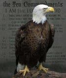 Amerikanska skalliga Eagle tio commandments Royaltyfria Bilder