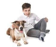 Amerikanska staffordshire terrier och tonårigt Arkivfoton