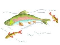 Amerikanskt rovdjurs- lås för regnbågeforell en fisk i th Arkivfoto