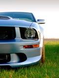 amerikanskt silvergrey sportscar Royaltyfri Fotografi