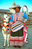 Amerindian woman. In traditional dress, Perù. Amerindians constitute around 45% of the total population. The two major indigenous or ethnic groups are the Royalty Free Stock Photos