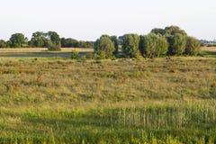 Amerongse Bovenpolder,乌得勒支;Amerongse Bovenpolder, Netherlan 免版税库存照片