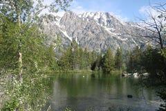 Amerykańscy alps od Jenny jeziora fotografia royalty free